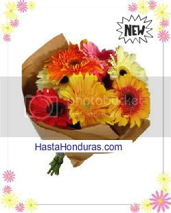 Bouquet de Gerberas
